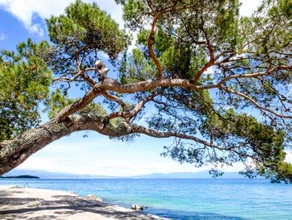 Strände in Dalmatien